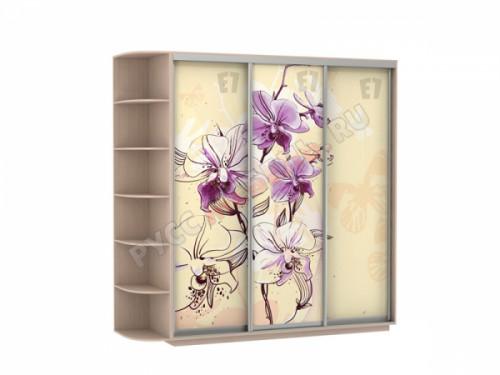 Шкаф-купе «Фото ТРИО ФФФ 180» дуб молочный (цветы)