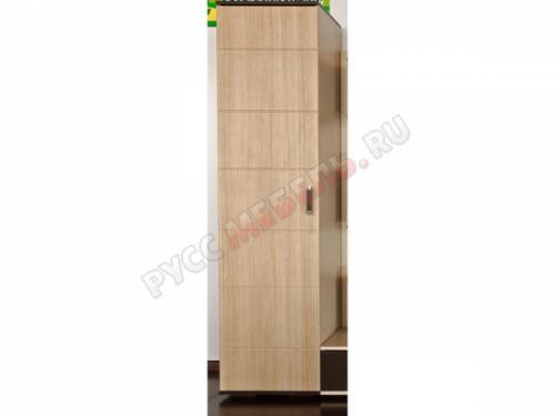 Шкаф к стенке Джелани-5: