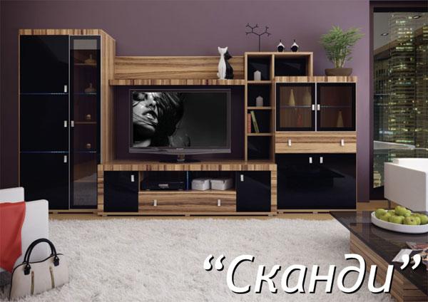 Корпусная мебель черного цвета
